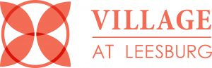 VAL Orange Horizontal Logo